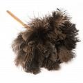 Ostrich Feather Duster Medium 70cm